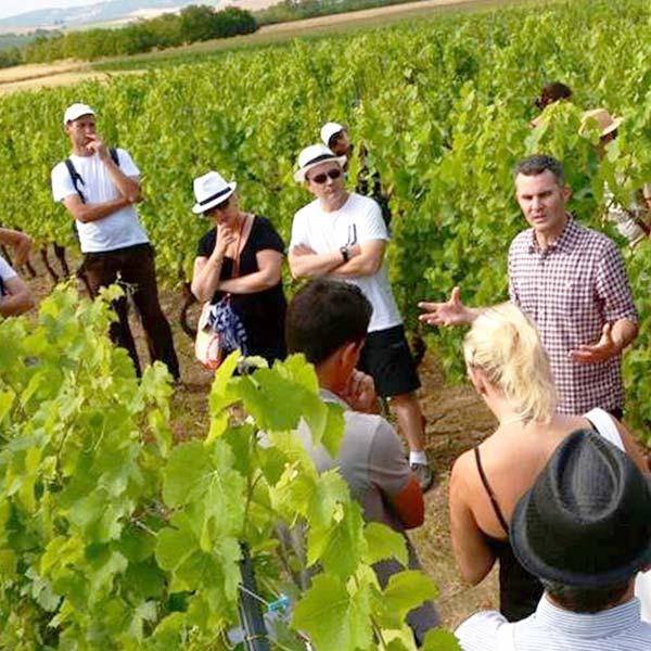 visite vignes Clermont-Ferrand