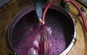 dégustation vin rouge clermont ferrand